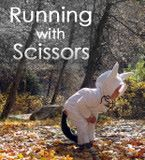 Click here to visit Running with Scissors!