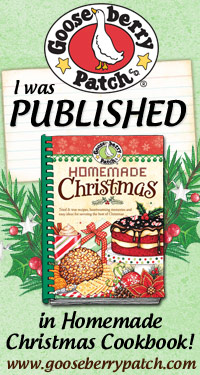 I Was Published in Homemade Christmas Cookbook