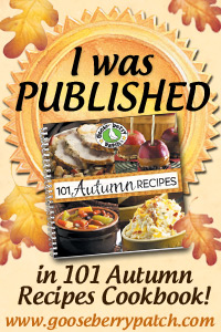 I Was Published in 101 Autumn Recipes Cookbook