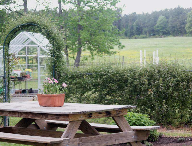 Beautiful countryside...looking toward the garden!