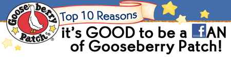 Top 10 Reasons it's GOOD to be a FAN