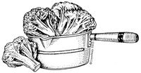 141_FFM_BroccoliInPot
