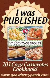 IWasPublished_101CozyCasseroles