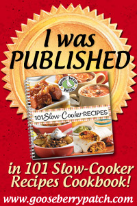 IWasPublished_101SlowCook