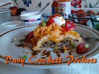 DavyCrockettPockets