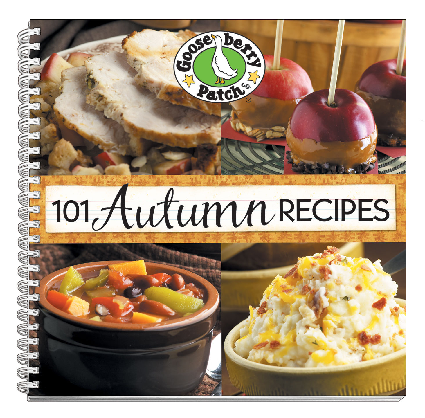 Want to learn more about 101 Autumn Recipes or add it to your cookbook  collection? Click below!