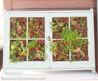 Window Frame Planter by Second Chance to Dream | Featured in Clever Container Garden idea slideshow by Gooseberry Patch