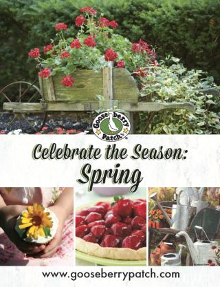 Celebrate Spring - Free Download