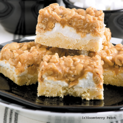 Salted Nut Roll Bars from 150 Recipes for a 13x9 Pan cookbook!